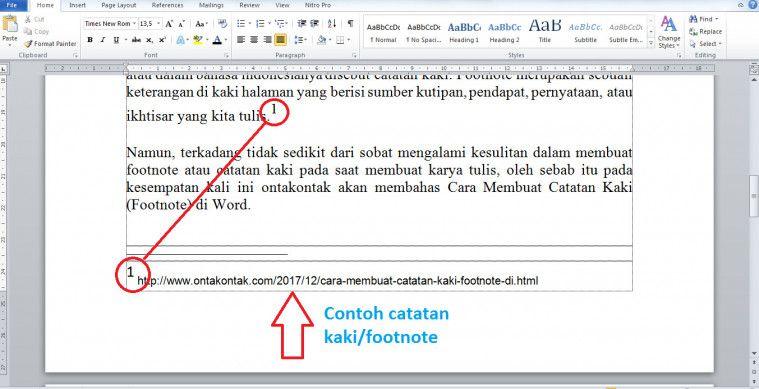 contoh footnote dari internet